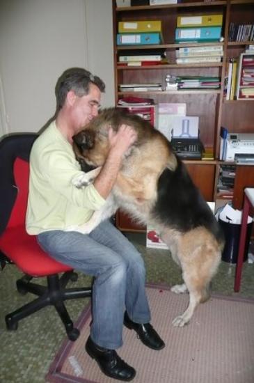 Winston et son adoptant