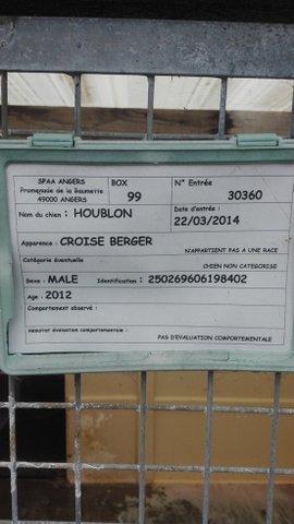 Houblon 4
