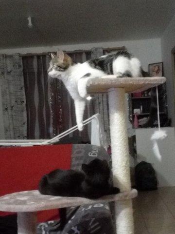 Kimy et jumper